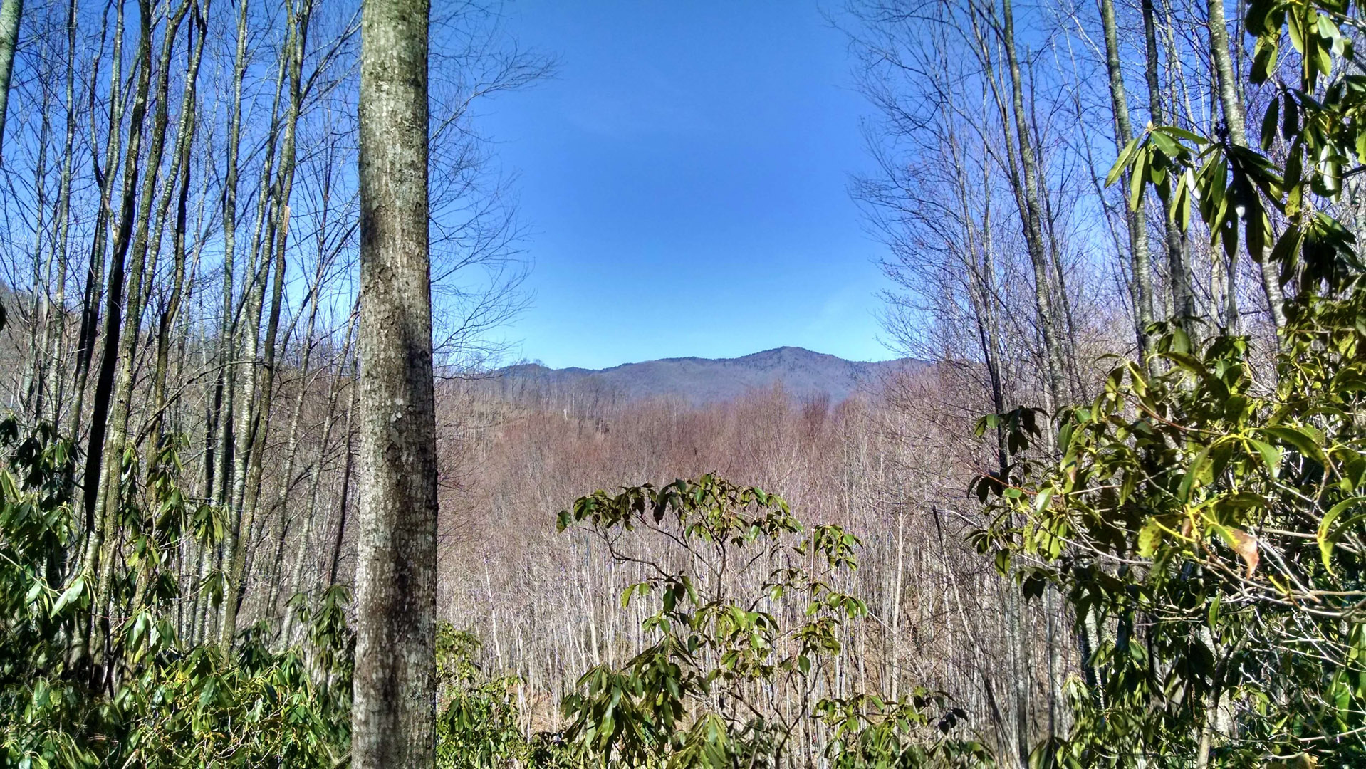 Balsam Mountain Preserve Lot 233 Balsam Mountain Preserve